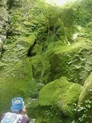 カラ滝 - 1.jpeg