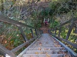 下りの階段 - 1 (1).jpeg