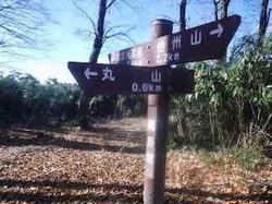 丸山標識 - 1.jpeg