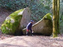 割れ石(上から) - 1.jpeg