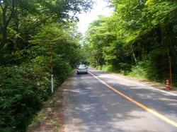 大山道路を下る.jpg