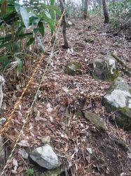 孝霊山への登り.jpg