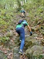 急な登り2 - 1.jpeg
