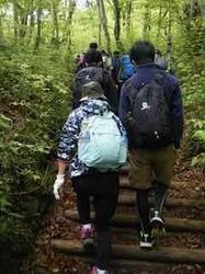 混み合う登山道 - 1.jpeg