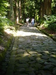 自然石の参道.jpg