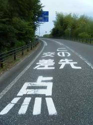 観光道路を横切る.jpg