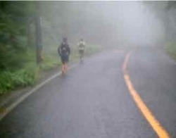 霧が深まる - 1.jpeg